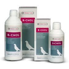 B-Chol