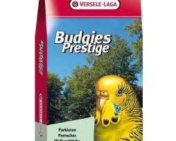 budgies-20kg