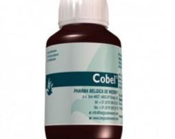 cobel-Belgica-de-Weerd-500x500