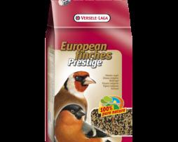 european-finches-prestige