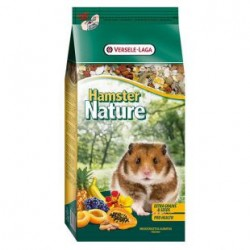 nature-hamster