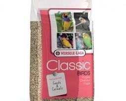 parrots-1250