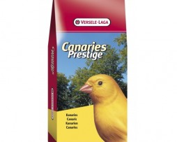 canaries-prestige-20kg