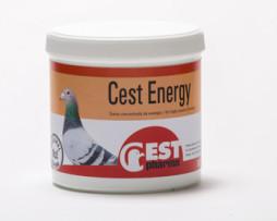 cest energy
