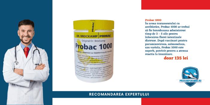 probac-produse-porumbei-ogm2h25rjrm70gtfhglw3os9lzi57dfvkxqe7eqyyw